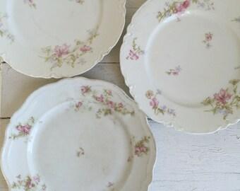 Vintage Plate Collection - Haviland Limoges - O & E G Royal Austria - Pink and Porcelain Plates