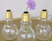 2 Light Bulb Glass Bottle Container Screw Lid DIY Terrarium Decorative Jar Vase 4.25 inch Art Clear Gift  Craft Supplies