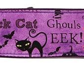 Halloween Words Purple Martingale Collar-