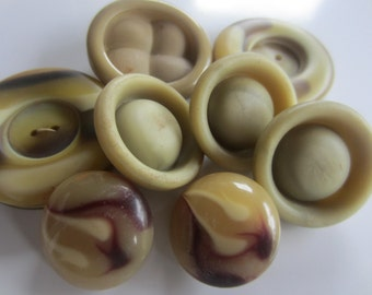 Vintage Buttons - Mid Century Modern lot of 8 large novelty neutrals,  some matching, old and sweet, celluloid (sept 167)