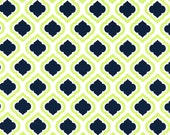 Home Decor Fabric - Premier Prints - Curtis Canal Slub Print - Lime Green and Navy Blue