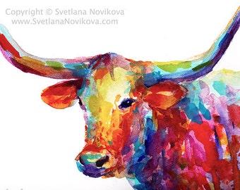 Colorful Texas Longhorn watercolor painting PHOTO PRINT Svetlana Novikova