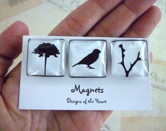 Black and White Birds - Square Glass Magnet set