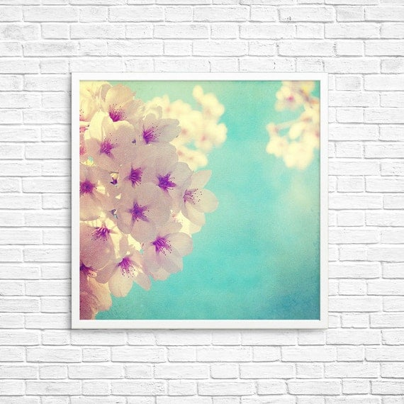 BUY 2 GET 1 FREE Floral Photography, Nature Photo, fpoe, Cherry Blossoms Print, Nature Print, Wall Decor, Spring Photo - Sunday Morning