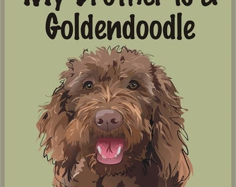 Brown Goldendoodle
