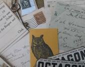 Owl Wrangler Vintage Inspiration Kit