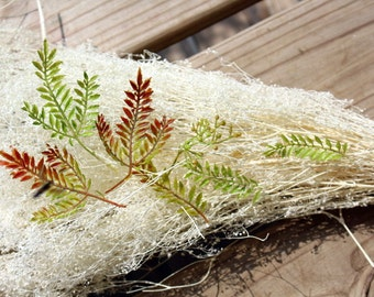 Fern like fronds-Terrarium supplies-boutonnieres,corsages-Fall foliage-Green and rusty ferns-7 pieces total with each bunch