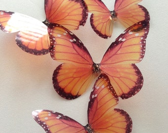 transparent monarch butterfly - wall art butterfly - monarch butterfly - 3D adhesive butterfly - stencil butterfly - Uniqdots on Etsy CODEA1