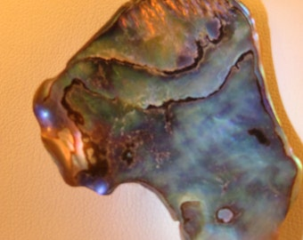 Shimmering and Sparkling New Zealand Paua Shell Necklace
