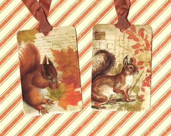Autumn, Tags, Squirrel, Autumn Tags, Harvest, Fall Season, Gift Tags
