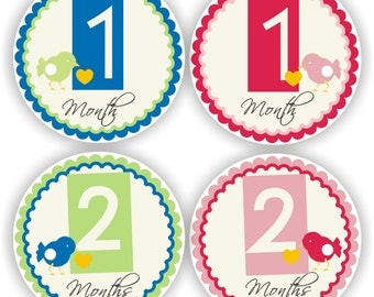 Twin Bodysuit Stickers - Baby Month Stickers - Twins Monthly Stickers - Baby Shower Gift - Baby Month Stickers - Twins Milestone Labels