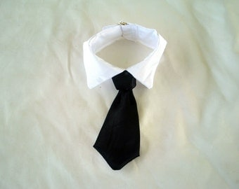 Dogs,  Cats, Pets TIE / Collar