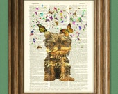 Yorkie puppy with butterfilies Yorkshire Terrier dog beautifully upcycled vintage dictionary page book art print