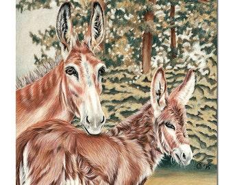 "DONKEYS portrait jenny foal ane mule pencils painting Sandrine Curtiss ORIGINAL Art 8x8"""