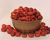 2 Pounds Orange Putka Pods, unscented, Potpourri, mini pumpkins, bowl filler, dried botanical, fall decor, Halloween, Bulk Putka Pods