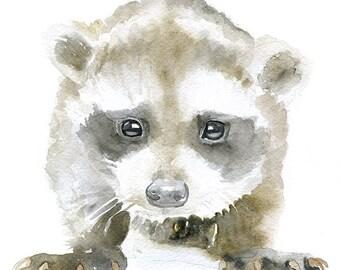 Baby Raccoon Watercolor Painting Giclee Print 5x7 Nursery Art