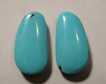 Campitos Turquoise cab set   ....  earring pair  ....  20 x 10 x 5 mm           ..... B2507