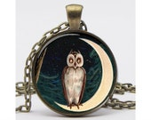 Owl on a Moon Necklace with Chain Art Pendant Picture Pendant Resin Pendant