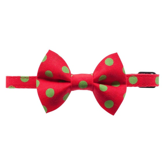 cat collar matching removable bow tie the edgy