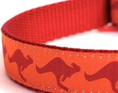 Sample Sale, Kangaroo Dog Collar, Australia Theme Pet Collar, Ribbon Adjustable Collar, Size Small Available, Ready to Ship
