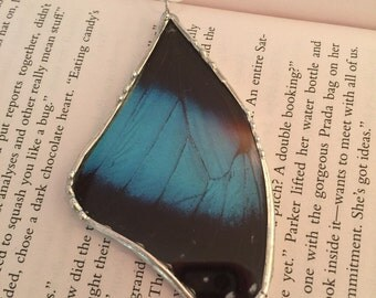 Butterfly jewelry, real butterfly jewelry, Real Butterfly Wing Necklace, butterfly Pendant, butterfly, handmade real butterfly pendant