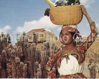 Vintage Postcard, Native Fruit Girl, Curacao, Color Postcard, Travel Photo, Travel Ephemera, Found Photo, Vernacular Photo