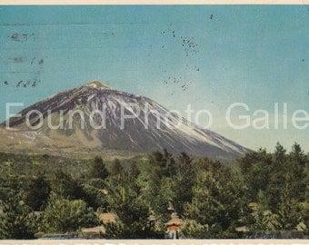 Vintage Postcard, Tenerife Island, Canary Islands, Vintage Postcard, Photo Postcard, Color Postcard, Old Postcard, Found Photo Postcard