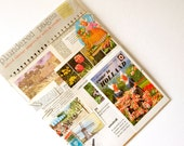 The Netherlands themed pack of VINTAGE BOOK PAGES - Plundered Pages