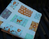Good Natured Baby Quilt