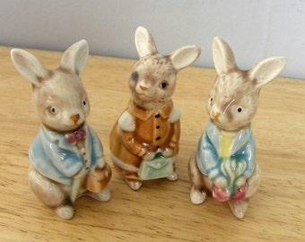Bunny Ornament - Rabbit Shopping - Golden Rose Giftware