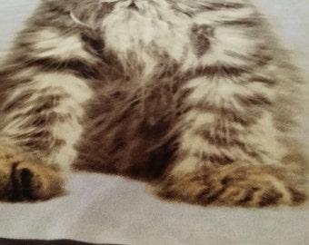 Lexi (The Gray Tabby) Fleece Blanket