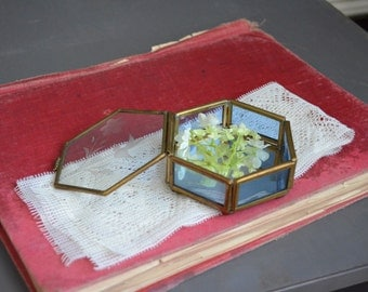 Vintage Glass and Brass Display Mirrored Base Blue Etched Hinged Jewelry Box Ball Feet Tiny Small Six Sided Mexico Vintage Box