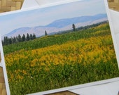 Meadows and Mountains Photo Note Card Flower Nature Scenic Photography Montana