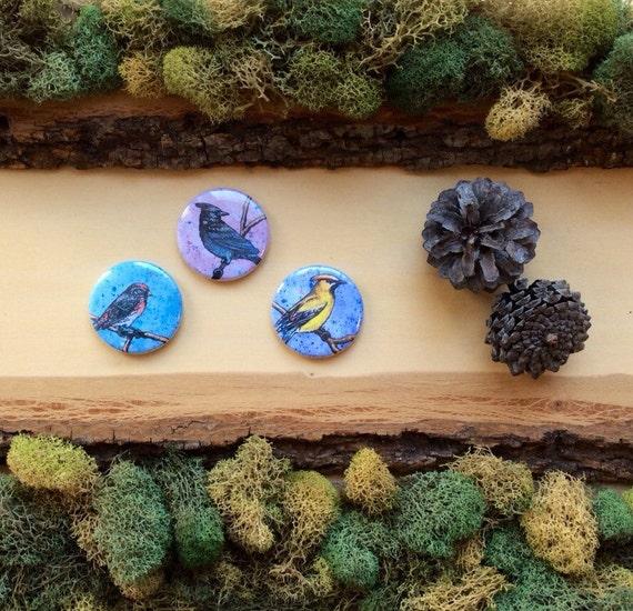 "Painted Birds Pins or Magnets Colorful Bird Badge Set of Magnets or Set of Pins Bright Birds Bird Accesories Bird Art Bird Pin 1.5"""