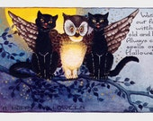 Halloween Greeting Card | Owl and Cats Warn of Witches Spells