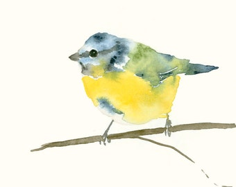 Bird Art Print Blue Tit