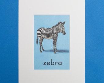 Zebra - Print from a Vintage Ladybird Book, Ladybird ABC