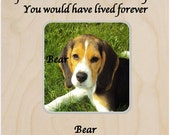 Pet Memorial Pet Loss Frame Pet Sympathy Personalized Frame If love could have saved you