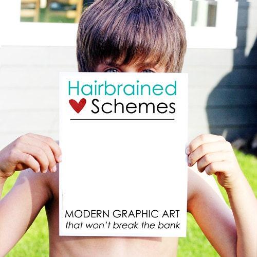 hairbrainedschemes