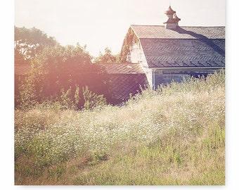 Barn Print, Barn Photography, Barn Picture, Landscape Photo, fine art photography, Barn Art, country home decor, landscape art,