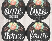 Baby Girl Month Stickers Monthly Baby Stickers, Milestone Baby Month Stickers, Monthly Bodysuit Vintage Floral Chalkboard Chalk Shabby Chic