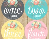 Baby Girl Month Stickers Monthly Baby Stickers, Baby Month Stickers, Monthly Bodysuit Vintage Floral Shabby Grey Pink Turquoise Yellow