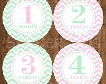 Monthly Baby Milestone Stickers Baby Girl Blush Pink Mint Green Chevron Dots Bodysuit Baby Stickers Baby Age Stickers Baby Month Sticker