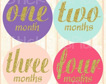 Monthly Baby Stickers Baby Girl Month Stickers Milestone Stickers Monthly Photo Stickers Bodysuit Sparkly Gold Glitter Cursive Script