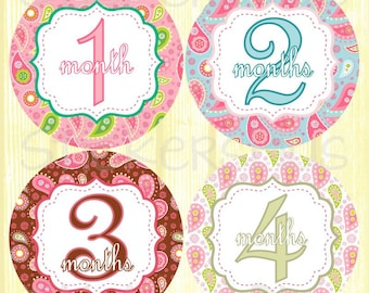Baby Girl Month Stickers Monthly Baby Stickers, Baby Month Stickers, Monthly Bodysuit Vintage Paisley Pink Blue Brown Green Baby Age Sticker