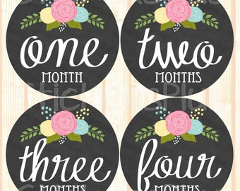 Baby Girl Month Stickers Monthly Baby Stickers, Milestone Baby Month Stickers, Monthly Bodysuit Vintage Roses Floral Chalkboard Chalk