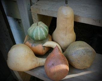 Primitive Autumn Squash Gourd Fall Decor