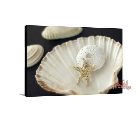 Seashell art bathroom wall decor beige and black starfish for Seashell bathroom accessories