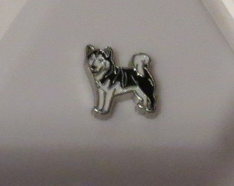Siberian Husky/Malamute Floating Charm For Glass Memory Locket