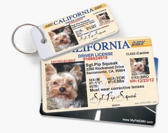 California 2013-2015 Personalized Pet License ID w/ Collar ID Tags